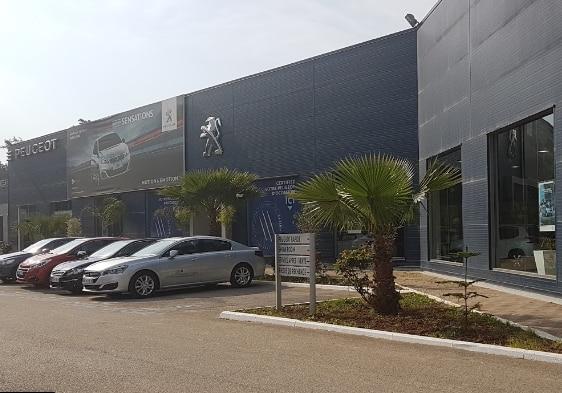 بيجو الجزائر